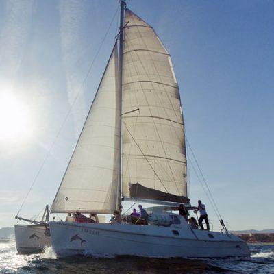 actividad en catamaran para empresas